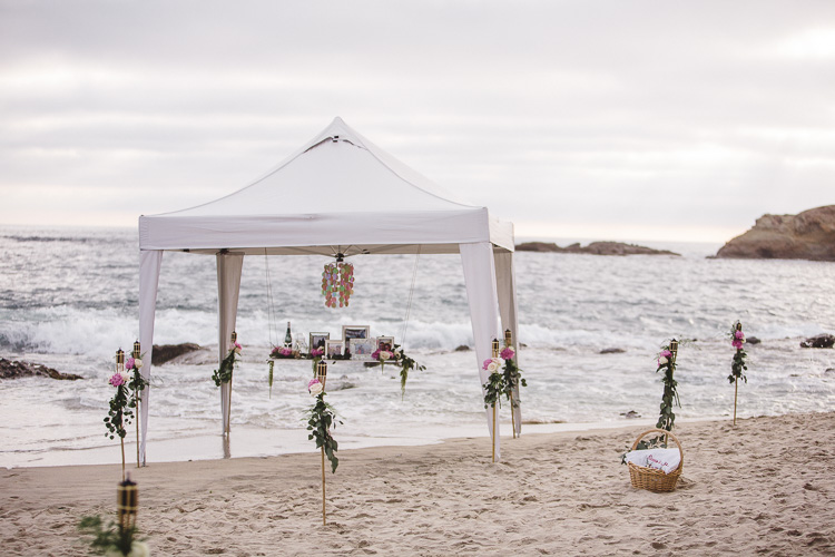 SM_laguna_beach_proposal_montage-0002.jpg
