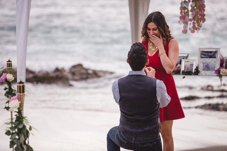 SM_laguna_beach_proposal_montage-0007.jpg